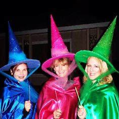 Flora, Fauna, and Merryweather. Perfect costumes for granting wishes for any sleeping beauty.