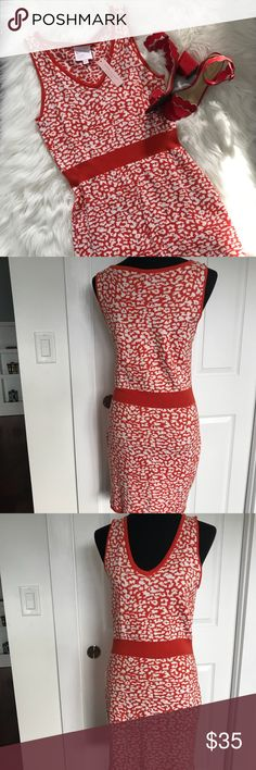 NWT Romeo & Juliet Couture Stretch Dress - Size M Adorable orange animal print sweater dress by Romeo and Juliet Couture. Light and great for work with a jacket as shown. Brand new - bought and never wore it. Super soft!!  Sits at the knee Romeo & Juliet Couture Dresses Midi