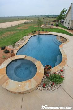 Another idea for pool size, shape, etc.. I would like way more landscaping to provide better privacy & sound control. Free-form Pool with Tanning Ledge | SwimmingPool.com