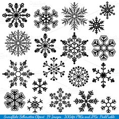 Snowflake Silhouette Vectors/Clipart by PinkPueblo on @creativemarket https://crmrkt.com/Qddam