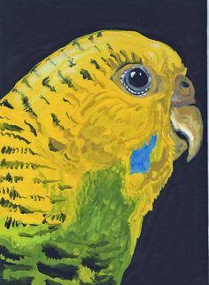 ACEO Yellow Budgie Parakeet Bird Pet Original by carlascreatures, $12.00