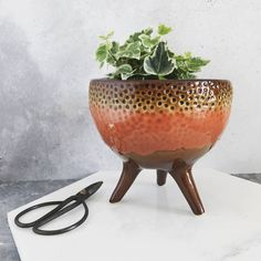 Are you interested in our mid-century plant pot? With our Bloomingville indoor planter you need look no further.