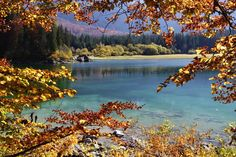 Autunno ai laghi di Fusine.--L'autunno in Italia by Francesco-Welcome and enjoy- - #Expo2015 #WonderfulExpo2015 #ExpoMilano2015 #Wonderfooditaly #MadeinItaly #slowfood #FrancescoBruno @frbrun http://www.blogtematico.it frbrun@tiscali.it http://www.francoingbruno.it