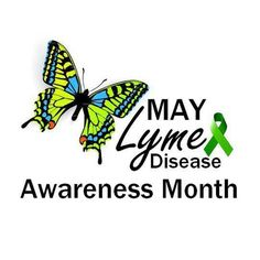 May is Lyme awareness month! Increase your knowledge on the hidden epidemic by clicking the link in our bio. #LymeNow #Disease #Fighting…