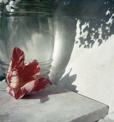 Jacques Henri Lartigue's color film photography. He uses color so sparingly and with deliberate attention.