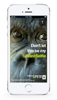 #Species are disappearing in the world and in snapchat, act now! #LastSelfie campaign.