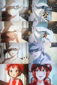 Cells at work Anime Love Couple, I Love Anime, Anime Nerd, Manga Anime, Funny Anime Couples, Blood Anime, Desenhos Love, L Lawliet, Naruto E Boruto