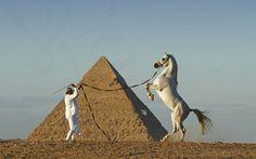 To the pyramid by Mohamed  Abdo, via 500px