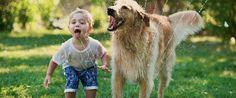 Quer saber qual animal de estimação escolher para nossos filhos? Saiba tudo sobre os animais de estimação recomendados e os benefícios de se ter um cão.