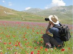 Marche Holiday Homes can organise nature photography courses in the Sibillini Mountains for our guests