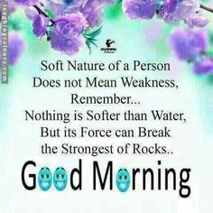 Happy Morning Quotes, Morning Prayer Quotes, Good Afternoon Quotes, Good Morning Texts, Good Morning Inspirational Quotes, Morning Greetings Quotes, Good Morning Love, Good Morning Messages, Good Night Quotes