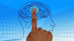 Los 'biohackers' aspiran a colocarse implantes cerebrales para comunicarse a través del pensamiento. 21/04/16