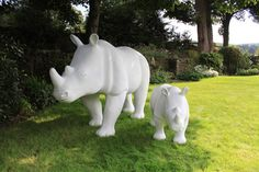 #Don'tHackit & The Great Big Rhino Project