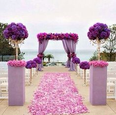 Purple N Pink Destination Wedding Planner Beach Party