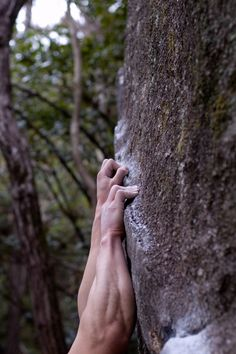 Forearms by Jonas Wiklund - Built by climbing! Ice Climbing, Boulder Climbing, Escalade, Rappelling, Kayak, Extreme Sports, Mountaineering, Climbers, The Great Outdoors