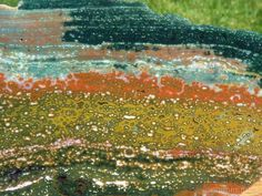 TCR Orbicular Ocean Jasper Agate lapidary Slab Phenomenal Colors Orbs 303 Gram | eBay