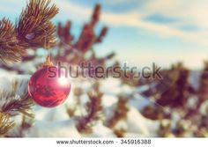Christmas ornament hanging from the mountain pine. Filters applied for retro effect. #shutterstock #photography