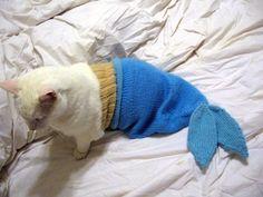 Halloween Pet costume - Cat Mermaid.