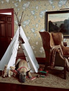 For the young explorer, Ralph Lauren Home Expedition Novelty Wallcovering