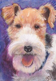"ACEO Terrier Watercolor Colored Pencil Painting 2.5""x 3.5"" Artist B. Donati WFT #Miniature"