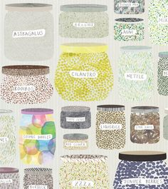 ana montiel illustration--good to see I'm not the only one who keeps her Cosmic Bubbles next to her Poppy Seeds in the pantry.