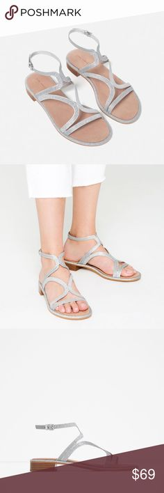 ZARA Silver Flat Sandals BRAND NEW Brand new with tags, never worn. Roman style. Silver buckle. Reduced from $79. Cheaper on Ⓜ️, just ask :) Zara Shoes Sandals