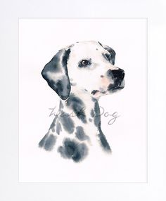 Dalmatian print of original watercolor painting, Dalmatian, Dalmatian dog painting, Dalmatian portrait, Dog watercolor, Gift for dog lover by WashDogBkk on Etsy
