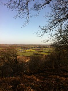 Montferland seen from Duivelsberg / devil's hill Nijmegen