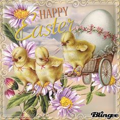 easter pictures easter image easter sayings easter picture quotes Easter Quotes Images, Happy Easter Quotes, Happy Easter Wishes, Easter Pictures, Pictures Images, Images Gif, Easter Sayings, About Easter, Fairy Crafts