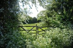 garden-lovers: (countryside, england, fence, garden, gate, green - inspiring picture on Favim.comから)