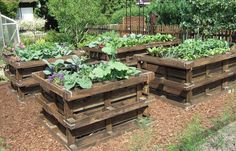 If space is an issue the answer is to use garden boxes. In this article we will show you how all about making raised garden boxes the easy way. Raised Flower Beds, Raised Garden Beds, Raised Beds, Pallets Garden, Wood Pallets, Pallet Gardening, Organic Gardening, Recycled Pallets, Pallet Wood
