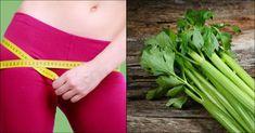 Pierda peso en 72 horas desintoxicando su organismo y acelerando el metabolismo con esta mezcla - e-Consejos