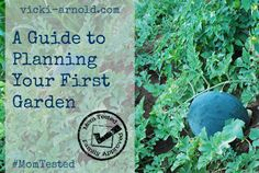 A Guide to Planning Your First Garden + Mom Tested Home Link up: All Things Garden!