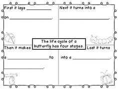 The life cycle of a butterfly is an informal writing activity for your students to complete. There are 3 graphic organizers to differentiate instruction for your students. There is a butterfly writing paper included as well. 1st Grade Science, Kindergarten Science, Teaching Science, Science Education, Teaching Ideas, Science Writing, Writing Activities, Four Square Writing, 3rd Grade Writing