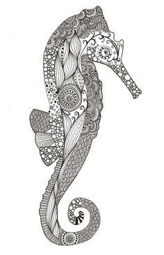 Drawings Of Seahorses New drawings