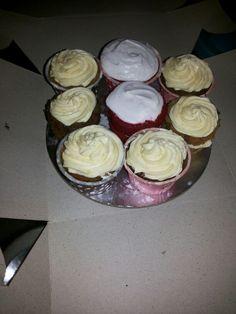 Cake tasting sessions
