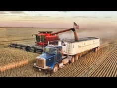 America's Farmers, the GOP's most reliable voters plow some of year's harvest under or let it rot John Deere Combine, Harvest Time, Fall Harvest, Case Tractors, Classic Tractor, Heavy Machinery, Ranch Life, Case Ih, Concrete Jungle