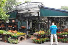 Ook Parijzenaars houden van tuinieren