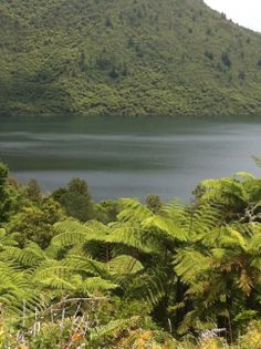 """The stunning emerald """"Green lake"""" side by side with the """"Blue lake"""" in Rotorua N.Z"""