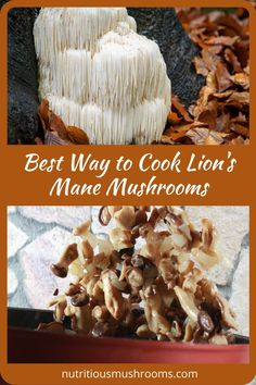 Discover the best way to cook lion's mane mushrooms. It has a seafood-like taste and provides health benefits that make it an all-around superfood for the brain. Edible Mushrooms, Wild Mushrooms, Stuffed Mushrooms, Growing Mushrooms, Vegan Crab, Mushroom Benefits, Vegan Recipes, Cooking Recipes, Lion Mane