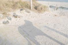Urlaub mit Hund an der Ostsee. Sammy wirft seinen Schatten. https://suedkap-pelzerhaken.com/ostseeurlaub-mit-hund/
