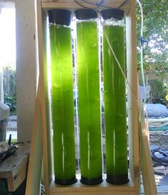 DiY Algae Reactor - algae farming//More interested in the short digression on chinese wheelbarrows, but hey, interesting permaculture site.