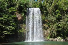 Millaa Millaa Falls - Atherton Tablelands  Crystal Cascades is a local hot spot near Cairns and is just a short 20 minute drive from town (you can actually ride a bike there if you are fit)!