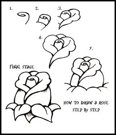 how to draw roses | Daryl Hobson Artwork: How To Draw A Rose: Step By Step