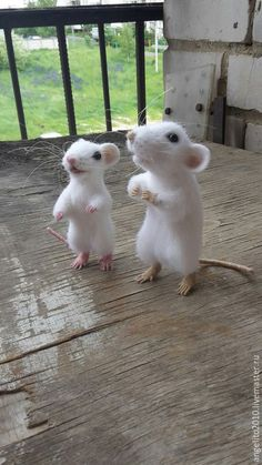 These little needle felted mice are adorable!  By Elena Kolonistova  from Russia