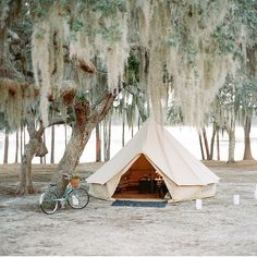 Our tent and that tree are perfection!  Regram from @mrsvalwaters who's Florida camp wedding last year was one of our favorites. Planning and design by @alison_events and flowers by @nataliebdesigns.