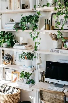 Minimalist office space with plants and bookshelves