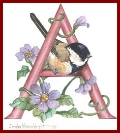 images about Artist - Carolyn Shores Wright on . Alphabet Art, Letter Art, Creative Lettering, Bird Illustration, Illuminated Letters, Bird Art, Beautiful Birds, Watercolor Paintings, Art Projects