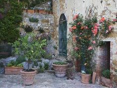 Potted Plants Decorate a Patio in Tuscany, Petroio, Italy Lámina fotográfica  For the pottery, please check out: Garden Detail, San Domenico Palace Hotel, Taormina, Sicily, Italy Lámina fotográfica  For the pot, please check out: http://www.jacksonpottery.com/