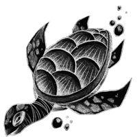 Significato del Tatuaggio Tartaruga.  Raffigura il sostegno del mondo, come ciò che tutto regge.  Link al sito: http://wobba-jack.com/it/significato-del-tatuaggio/animali/acqua/significato-tatuaggio-tartaruga/   #significato #significatotatuaggio #significatotattoo #significatotartaruga #turtletattoo #tattooart #tattoolife #tattoodesign #turtle #tatuaggio #tatuaggiotartaruga